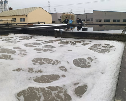 Zhucheng Homology Knitting Co., Ltd. 1500T / D Printing and Dyeing Wastewater Treatment Project
